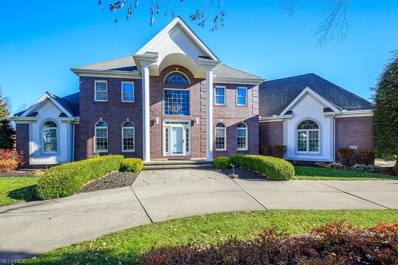 5731 Canyon View Dr, Perry, OH 44077 - MLS#: 3958948