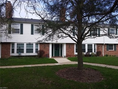 7045 Carriage Hill Dr UNIT 204, Brecksville, OH 44141 - MLS#: 3958949
