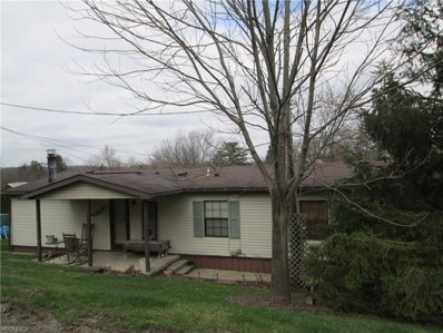 7253 Huntsman Rd, Cambridge, OH 43725 - MLS#: 3959434