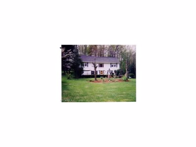 3352 Molly Drive, Akron, OH 44312 - #: 3959777