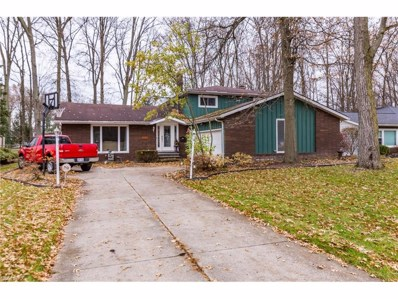 29583 Bretton Ridge Dr, North Olmsted, OH 44070 - MLS#: 3960190