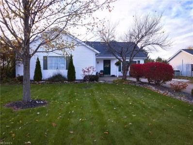 371 W Parkway Dr, Madison, OH 44057 - MLS#: 3960447