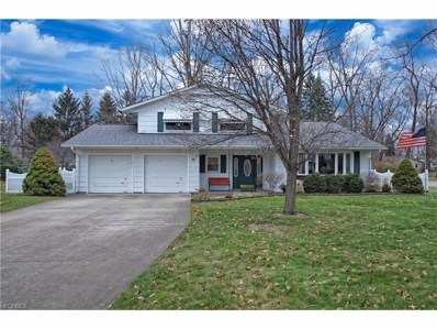 79 Melrose Dr, Painesville, OH 44077 - MLS#: 3960724