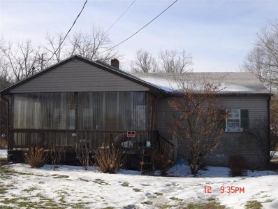 45305 State Route 46, New Waterford, OH 44445 - MLS#: 3960889