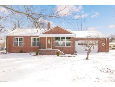 229 Fay Ave, Avon Lake, OH 44012 - MLS#: 3961238