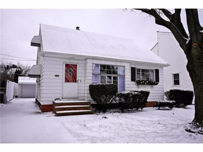 14225 Birchwood Ave, Cleveland, OH 44111 - MLS#: 3961391