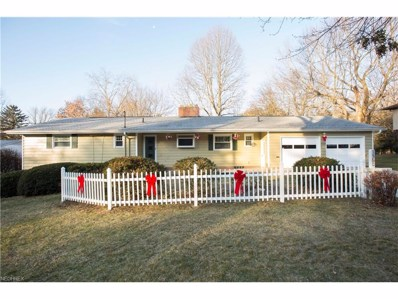 1560 S Lincoln St, Kent, OH 44240 - MLS#: 3961602