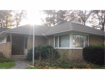23501 Effingham Blvd, Euclid, OH 44117 - MLS#: 3961850