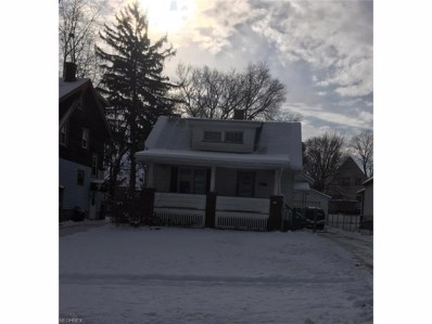 793 E Lucius Ave, Youngstown, OH 44502 - MLS#: 3962013