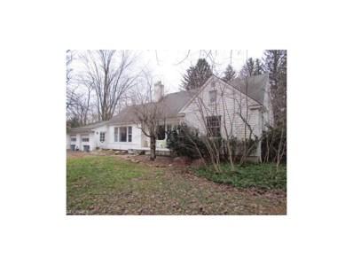 13900 Watt Rd, Russell Township, OH 44072 - MLS#: 3962186