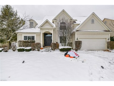 7368 Winchester Dr, Solon, OH 44139 - MLS#: 3962193