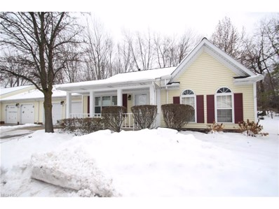 471 Scarborough Ln, Painesville, OH 44077 - MLS#: 3962262