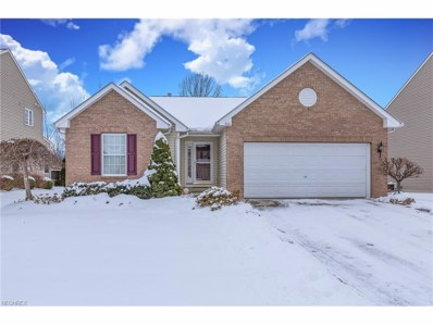 402 Birchwood Ln, Painesville, OH 44077 - MLS#: 3962352