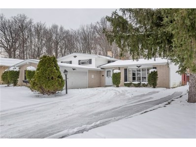 2058 Marshfield Rd, Mayfield Heights, OH 44124 - MLS#: 3962481