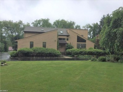 1231 Dairy Ln, East Liverpool, OH 43920 - MLS#: 3962490