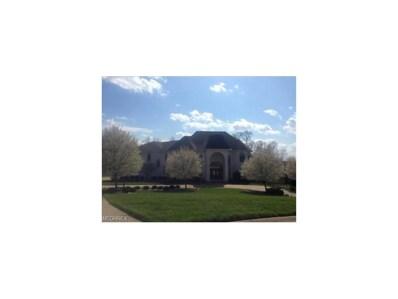 282 Orlando Manor, Wintersville, OH 43953 - MLS#: 3962534