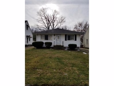 14106 Tokay Ave, Maple Heights, OH 44137 - MLS#: 3962620