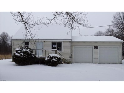 9059 State Route 700, Windham, OH 44288 - MLS#: 3962664