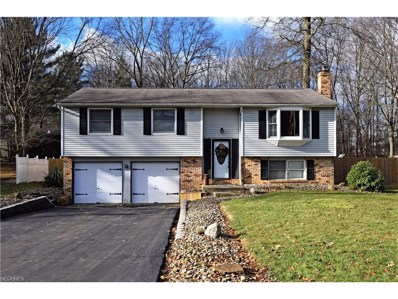 393 Stahl Ave, Cortland, OH 44410 - MLS#: 3962761