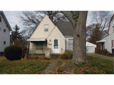 17404 Elsienna Ave, Cleveland, OH 44135 - MLS#: 3962787