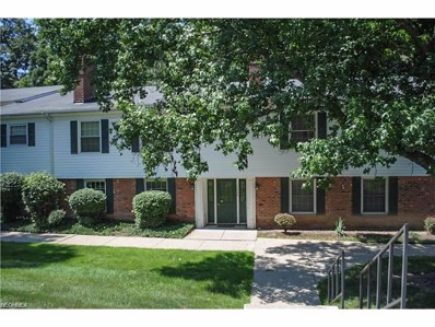 7025 Carriage Hill Dr UNIT 101, Brecksville, OH 44141 - MLS#: 3963433