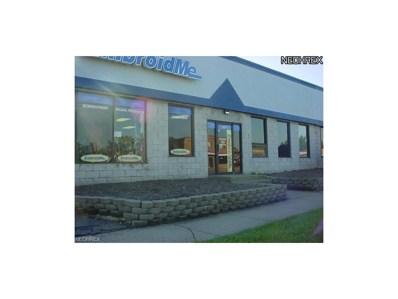 4315 Ridge Rd, Brooklyn, OH 44144 - MLS#: 3963709