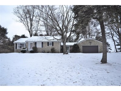 12040 Baywood St SOUTHEAST, Minerva, OH 44657 - MLS#: 3964356