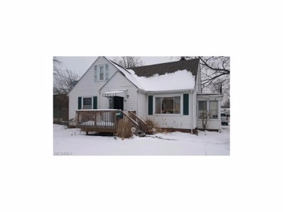 435 E 319th St, Willowick, OH 44095 - MLS#: 3964405