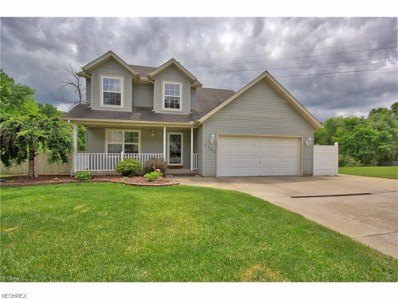 1332 Derbydale Rd, Akron, OH 44306 - MLS#: 3964411