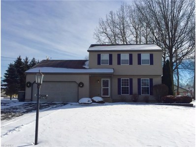 10405 Struthers Rd, New Middletown, OH 44442 - MLS#: 3964412