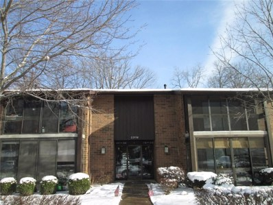 22958 Maple Ridge Rd UNIT 208, North Olmsted, OH 44070 - MLS#: 3964696