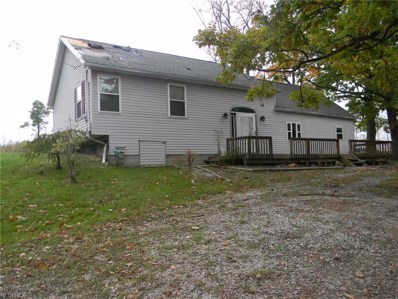 4783 River Rd, Perry, OH 44081 - MLS#: 3964825