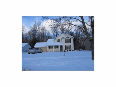 11221 Heritage Dr, Twinsburg, OH 44087 - MLS#: 3965191