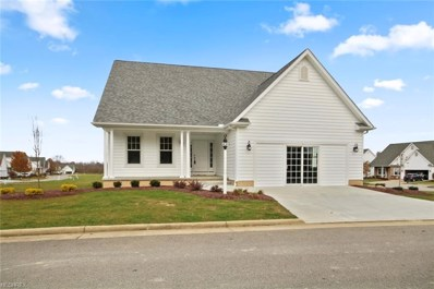 241 Saybrook Drive, Canfield, OH 44406 - #: 3965303