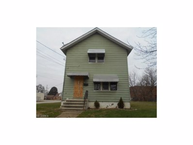 1217 Tampa Ave, Akron, OH 44314 - MLS#: 3965377