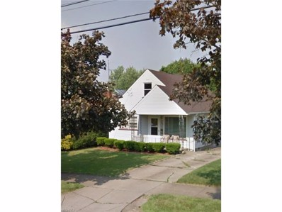 309 N Belle Vista Ave, Youngstown, OH 44509 - MLS#: 3965607