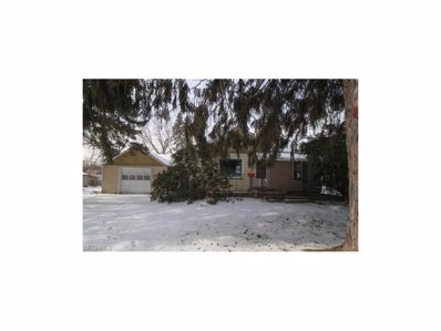 282 N Main St, Youngstown, OH 44515 - MLS#: 3965616