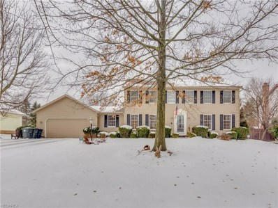 2411 Balmoral Dr, Akron, OH 44333 - MLS#: 3965895