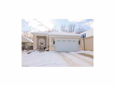 9768 Scottsdale Dr, Broadview Heights, OH 44147 - MLS#: 3966171