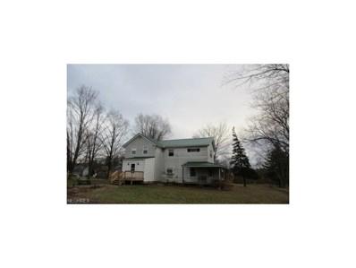 1315 W Beech St, Alliance, OH 44601 - MLS#: 3966605