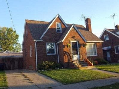 18901 Kewanee Ave, Cleveland, OH 44119 - MLS#: 3966755
