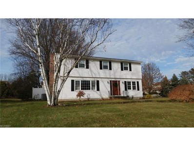380 Leatherman Rd, Wadsworth, OH 44281 - MLS#: 3966758