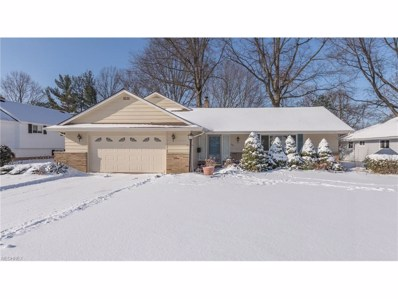 394 Audrey Dr, Richmond Heights, OH 44143 - MLS#: 3966813