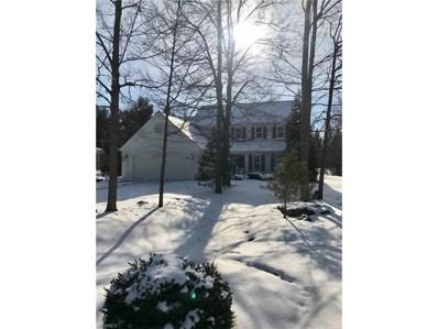 262 Manor Brook Dr, Chagrin Falls, OH 44022 - MLS#: 3966899