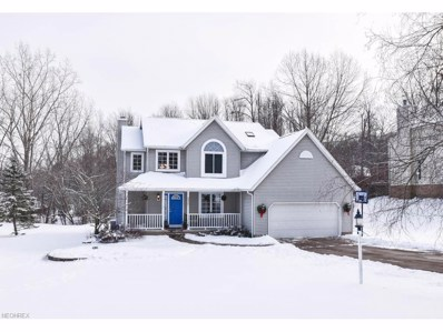 6917 Pine Knoll Dr, Clinton, OH 44216 - MLS#: 3966908