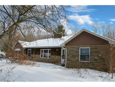 16721 Savage Rd, Chagrin Falls, OH 44023 - MLS#: 3967102