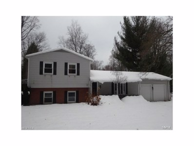 1816 Bathgate Ave, Madison, OH 44057 - MLS#: 3967454