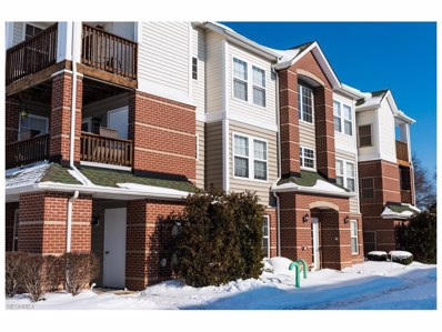 23004 Chandlers Ln UNIT 347, Olmsted Falls, OH 44138 - MLS#: 3967684