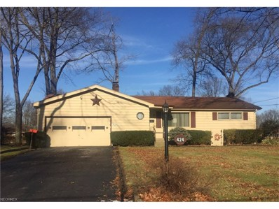 424 Laurel St, Youngstown, OH 44505 - MLS#: 3968183