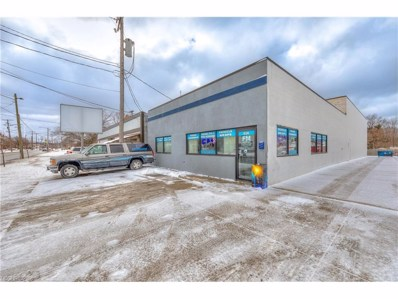 824 E 222nd St, Euclid, OH 44123 - MLS#: 3968330